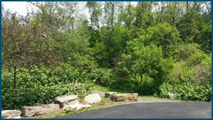 Emerald View Park